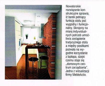 artykuł prasowy